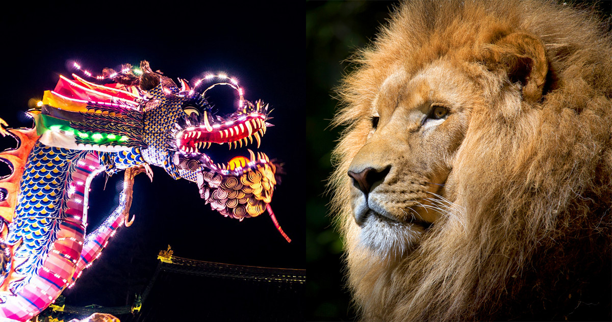 Picture of a chinese dragon and an african lion