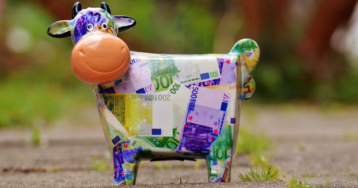 Picture of a cow shaped piggy bank