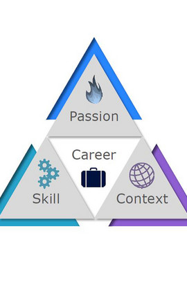 Bild des Career Triangle
