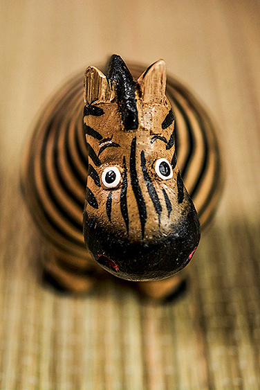 filler-news-business-tiere-zebra3-en.jpg